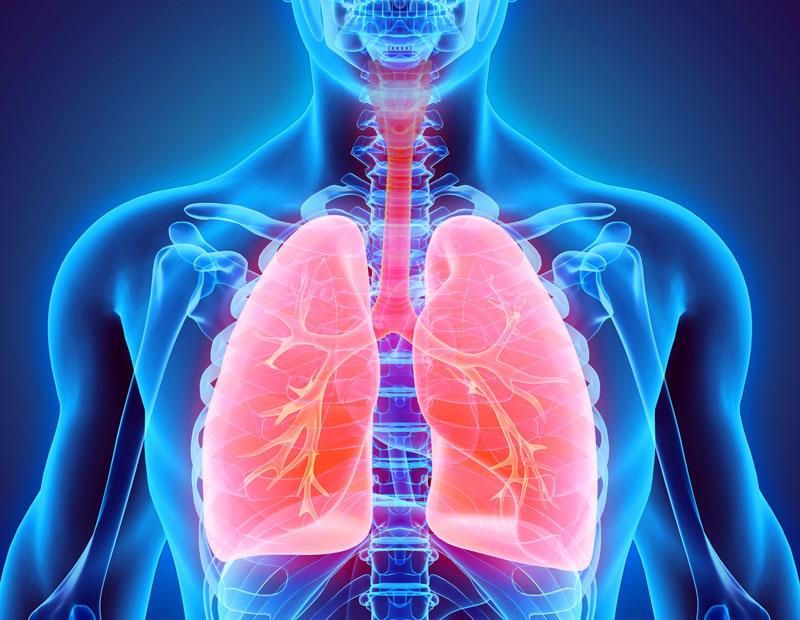 عفونت دستگاه تنفسی فوقانی عفونت دستگاه تنفسی فوقانی tafanosi 2