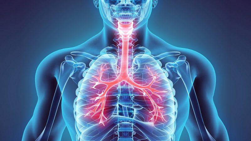 بیماری های تنفسی بیماریهای تنفسی بیماریهای تنفسی tanafosi